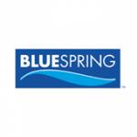 Blue Spring Wellness logo