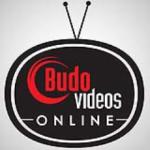 Budo Videos logo