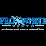 ProWhiteTeeth logo