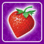 StrawberryNET.com logo