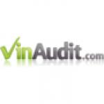 VInAudit.com logo