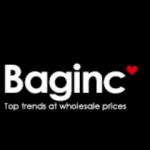 BagInc logo