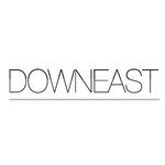 DownEast Basics logo