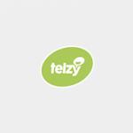 Telzy logo