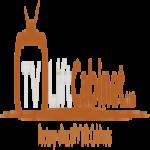 TVLiftCabinet.com logo