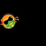 Sun Frog Shirts logo