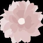 Love Ophelia logo