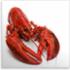 Lobster Gram Promotion Code